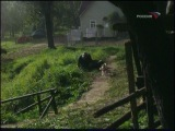 Кадриль (1999) TVRip